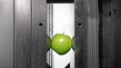 Sumitomo(SHI)脱纸 - 苹果的模具安全证明
